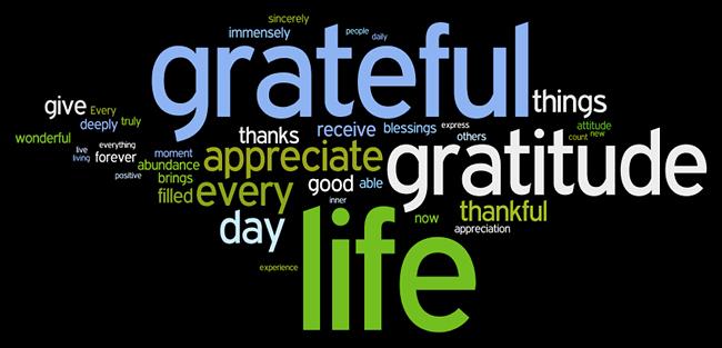 Appreciate Your Life